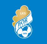 Bór Dębno logo klubu