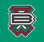 KS Brochów Wrocław logo klubu