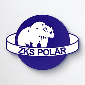 Niedźwiedź w stanie hibernacji