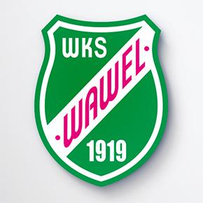 Wojskowi zostawili Wawel